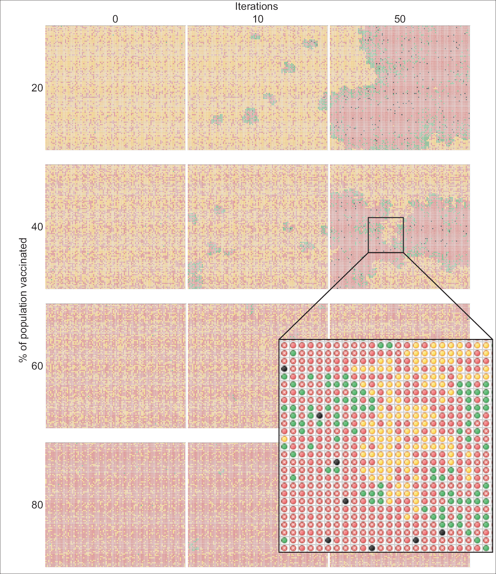 Figure 3: Vaccine computer simulator output. The series of images depict the progression of the measles virus as a function of both time (iterations) and vaccination coverage. The simulation was written in a Microsoft Excel spreadsheet to facilitate manipulation by students. Conditional formatting was used to represent the status of individuals within a population. Green = sick, red = vaccinated, yellow = unvaccinated, black = dead, red with white